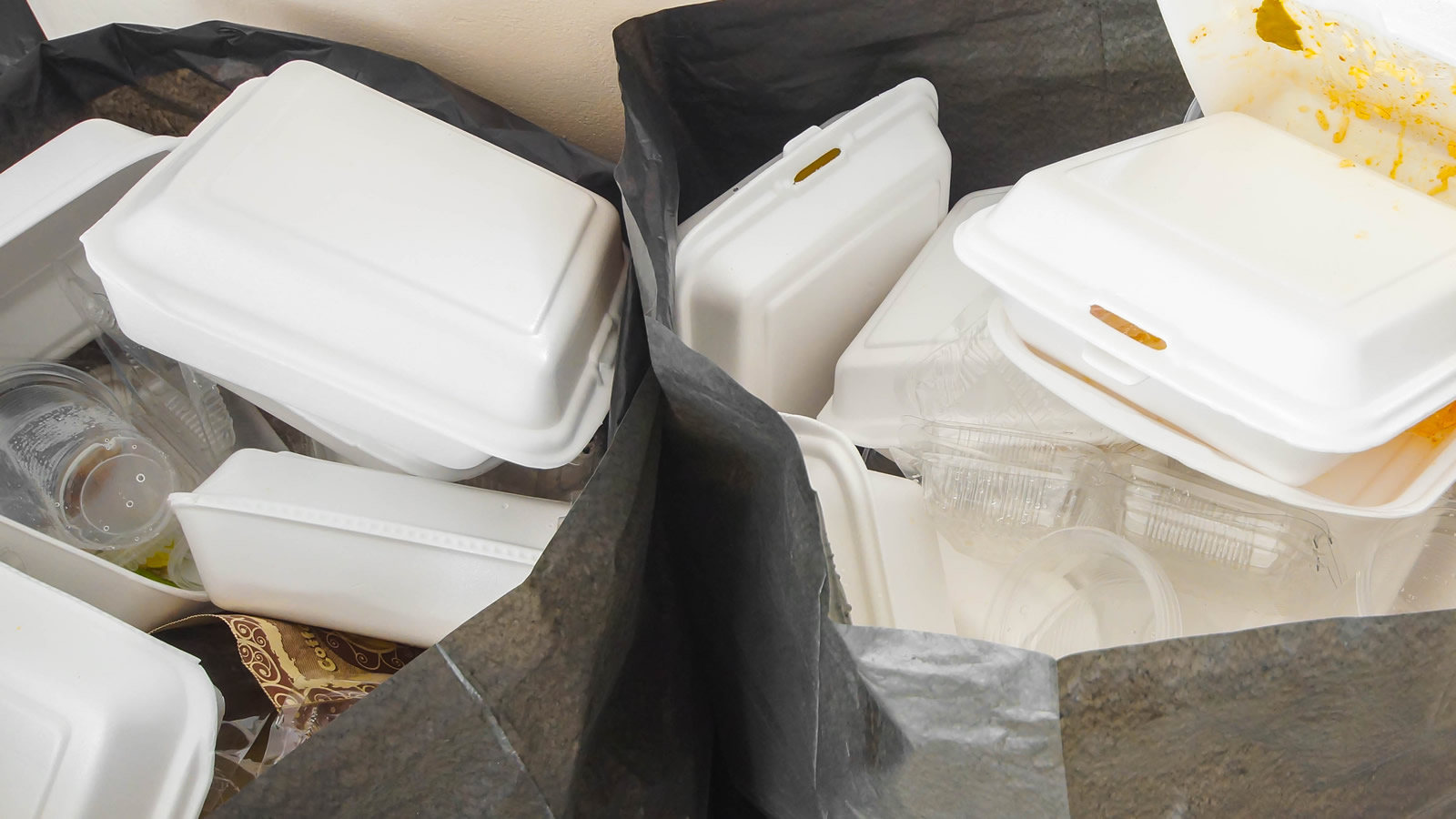 <h4>POLLUTION THAT LASTS FOR HUNDREDS OF YEARS</h4><h5>Polystyrene foam breaks apart easily, but it persists in the environment in tiny particles—and every bit of it ever made is still out there and could continue to threaten wildlife for hundreds of years to come.</h5><em>wk1003mike / Shutterstock</em>